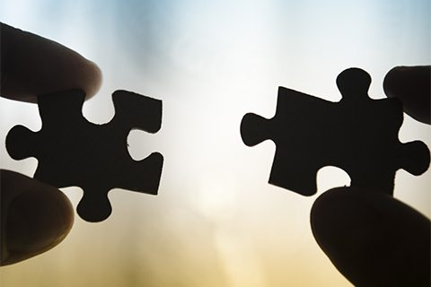 Featured Partners of Metaplastic Breast Cancer Global Alliance form pieces to the puzzle